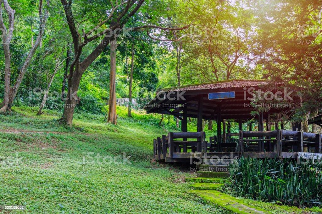 Un pabellón de madera en el Parque Nacional - foto de stock