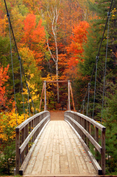 A wooden pedestrian footbridge leads to autumn colors in the White Mountains of New Hampshire A wooden pedestrian suspension bridge over a stream takes visitors on a fall hike in the White Mountains of New Hampshire white mountains new hampshire stock pictures, royalty-free photos & images