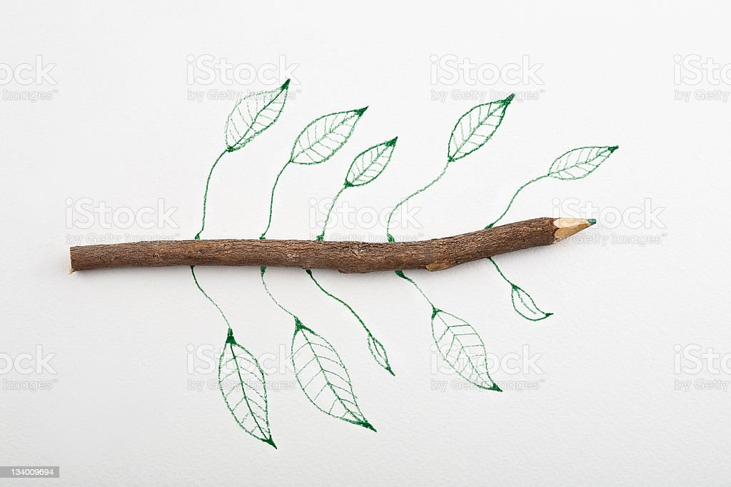 Wooden Pencil stock photo