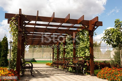 Wooden pergollas from natural wood with comfortable benches in a modern country village on a sunny summer day. The paved path is laid past flower beds, ornamental shrubs and trees. Russia. Close-up