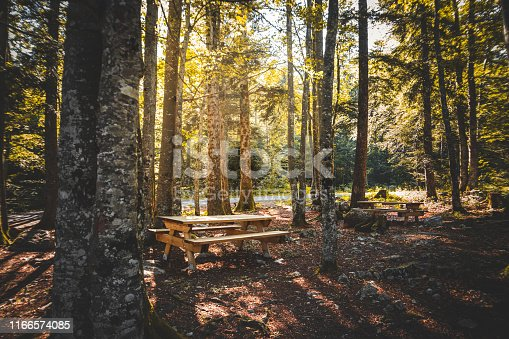 Wide angle view of wooden picnic table for tourism in middle of a beautiful forest in french Ain department, illuminated by sunlight at the end of summer season. Shot in Bugey mountains, in Ain, Auvergne-Rhone-Alpes region in France (Europe).