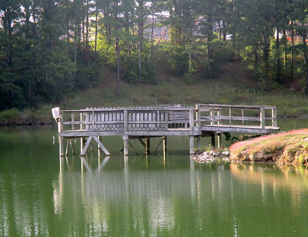 Wooden Pier at Lake stock photo