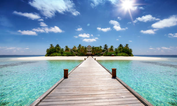 A wooden pier leading to a tropical paradise island stock photo