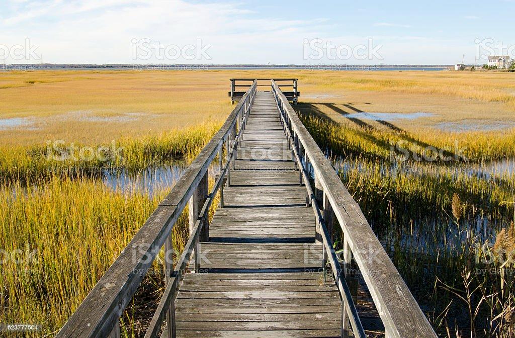 Wooden pier over swamp in North Wildwood stock photo
