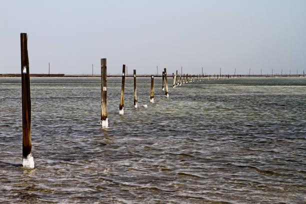 holzsäulen auf saline salz see baskunchak - dunkle flecken entferner stock-fotos und bilder