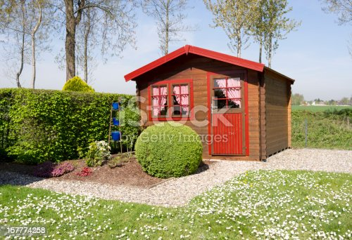 Little pine wooden cottage with curtains, buxus ball, hornbeam hedge,garden path with pebbles  and lawn with daisies in spring.Poplar trees in the background.