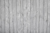 istock wooden planks, wood background, white, grey 544963492