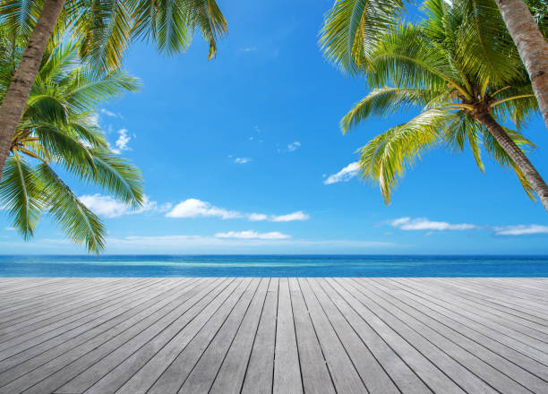 Wooden platform under palm trees beside tropical sea stock photo