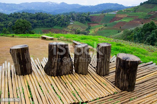 601026242istockphoto Wooden platform with green field defocused abstract background 855484742