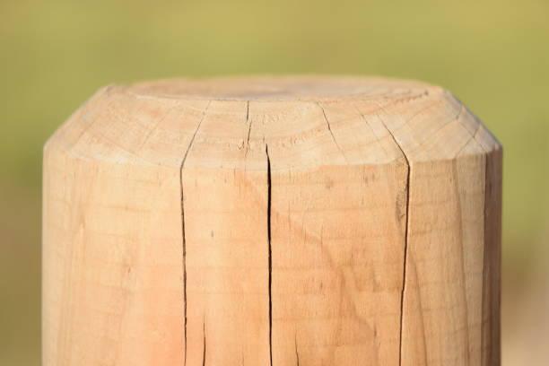 poste de madera - herrenhaus grundrisse stock-fotos und bilder
