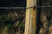 istock Wooden poles and rusty barbed wire 916844022