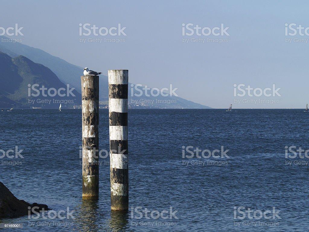 Wooden poles royalty-free stock photo