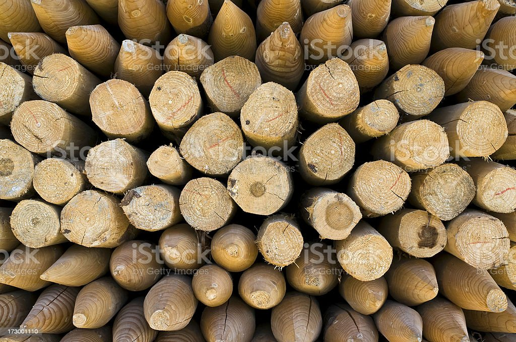 Wooden posts royalty-free stock photo