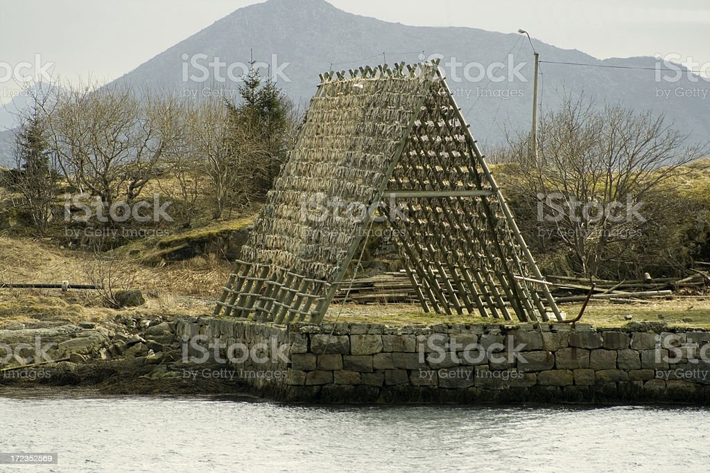 Wooden rack with stockfish royalty-free stock photo