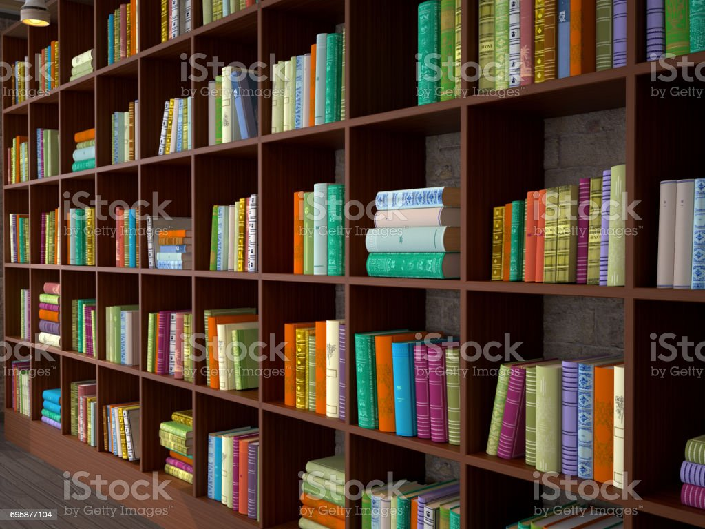 Wooden racks with different books Library 3d