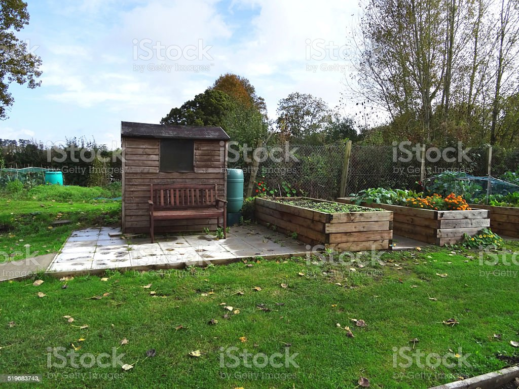Incredible Wooden Raised Beds In Allotment Vegetable Garden Shed Bench Gmtry Best Dining Table And Chair Ideas Images Gmtryco