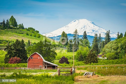 Traditional wooden red barn set amongst the vibrant green landscape, orchards, crops and well-tended farmland of Oregon, overlooked by the dramatic snow capped peak of Mt. Adams, Washington, USA. ProPhoto RGB profile for maximum color fidelity and gamut.