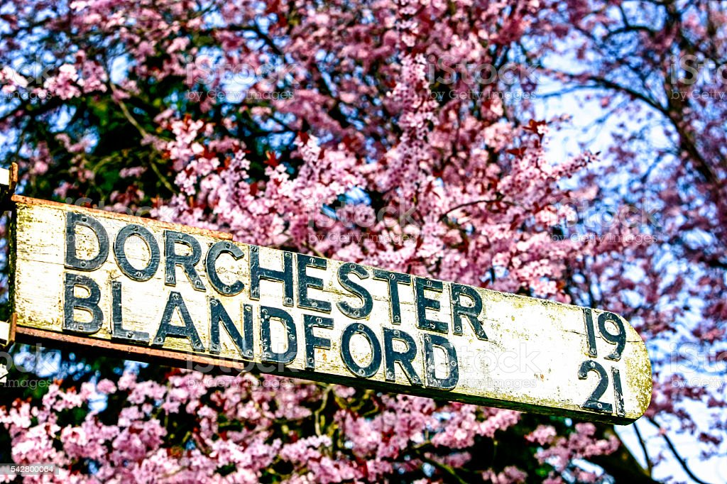 Wooden Road sign to Dorchester and Blandford in Dorset UK stock photo