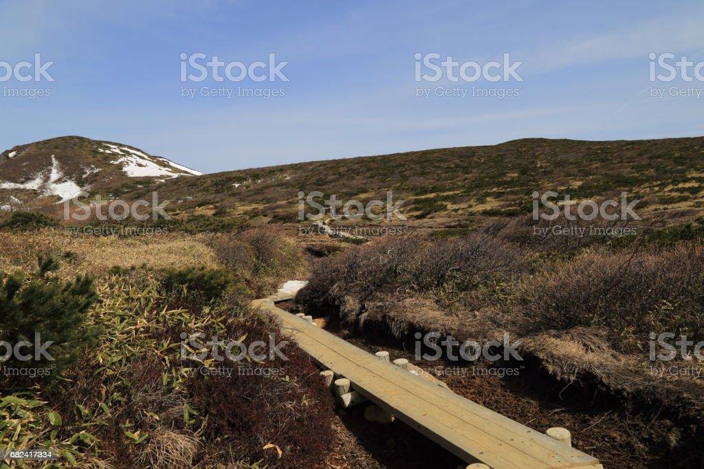 A wooden road to Sanbonyari peak ( Sanbonyari-dake ) in Mount Nasu ( Nasu-dake ) royalty-free stock photo