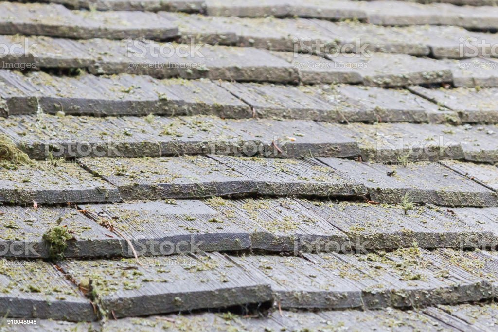 Wooden roofing tiles stock photo