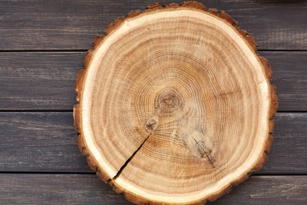 En bois rond disque vide, la texture naturelle du bois, fond - Photo