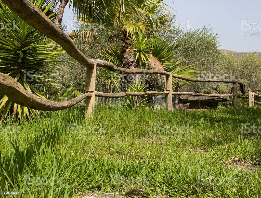 Photo libre de droit de Clôture En Bois Dans Le Jardin Rustique ...