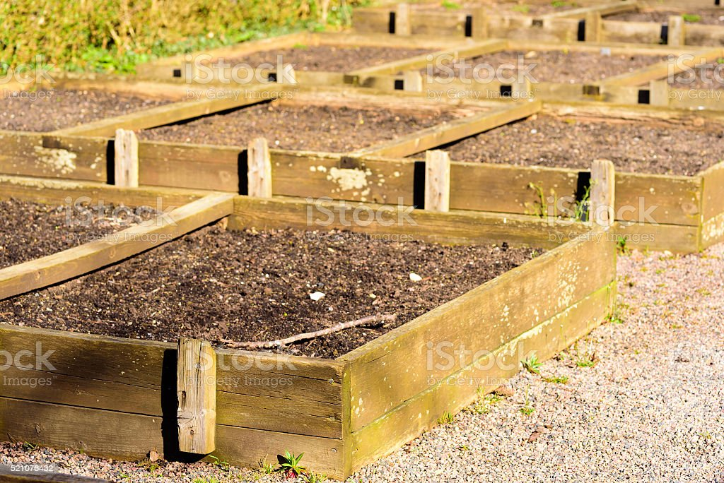 Wooden seedbeds stock photo
