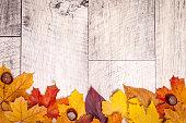 木製の背景に足を運んだり。すばらしい秋