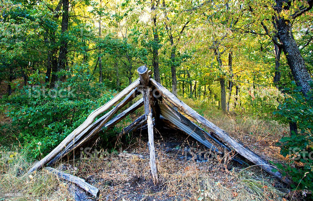 wooden shelter in green forest stock photo