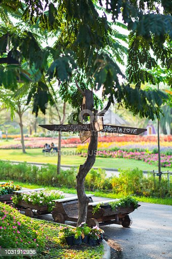 Wooden sign and fingerpost with LOVE in park Rama 9 as junction in area with topic love and romance. Park is seated in Bangkok Srinakarin.