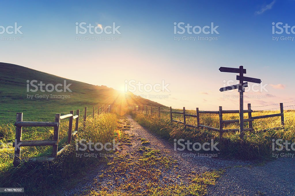 wooden signpost near a path stock photo