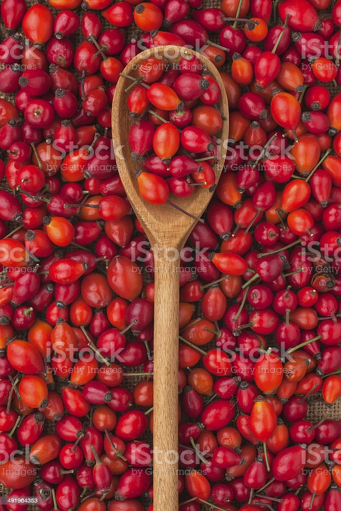 wooden spoon with wild rose stock photo