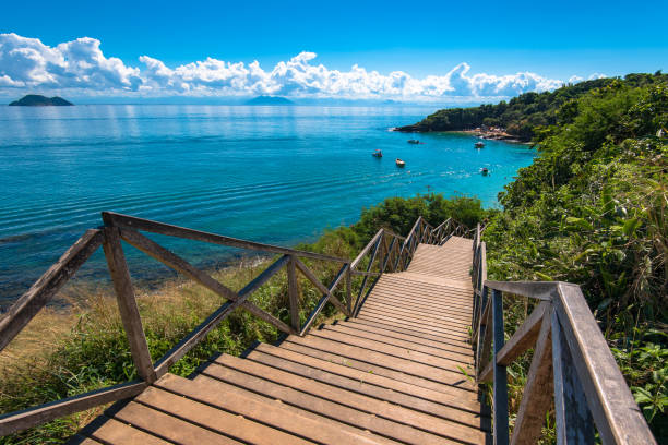 Wooden Stairs Down to the Ocean stock photo