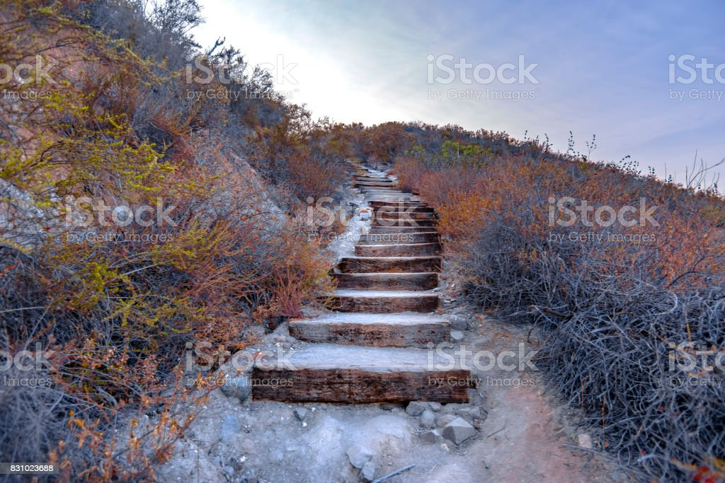 Wooden stairs on a hike in southern California stock photo