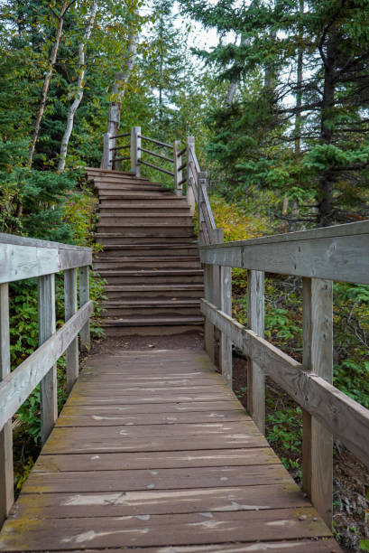 Wooden stairs on hiking trail at Tettegouche State Park along the shores of Lake Superior stock photo