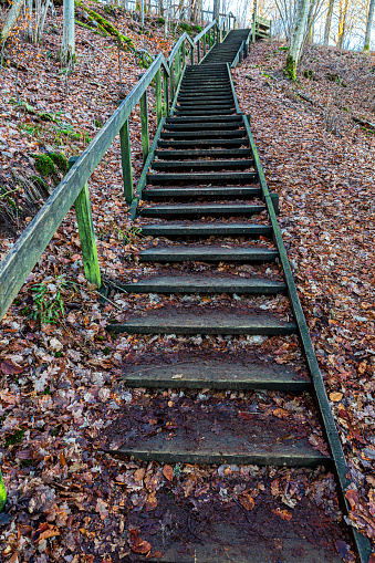 Old long, high and well used wooden stair surrounded by green vegetation, urban exploration