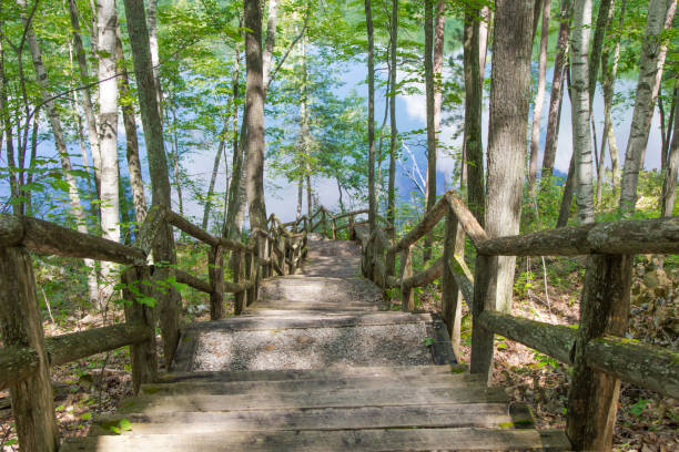 Wooden Stairs Through Forest To A Wilderness Lake In Michigan stock photo