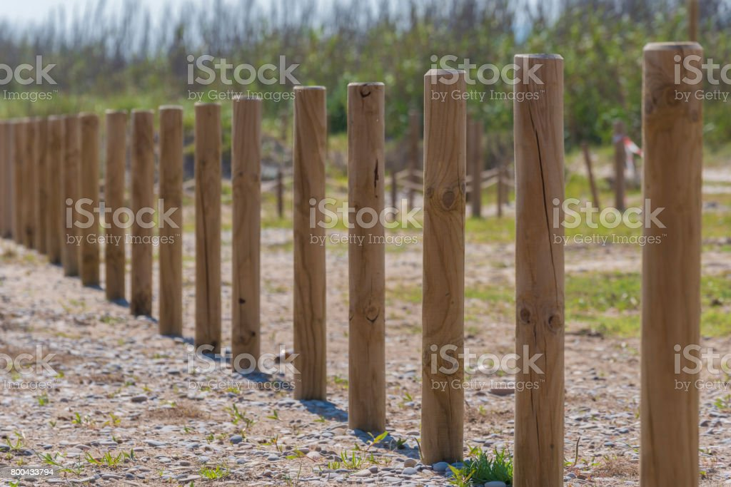 Wooden stakes. stock photo
