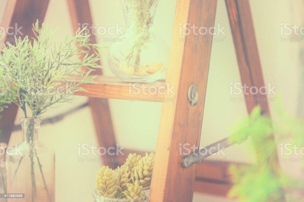木製脚立に、植物。 ストックフォト