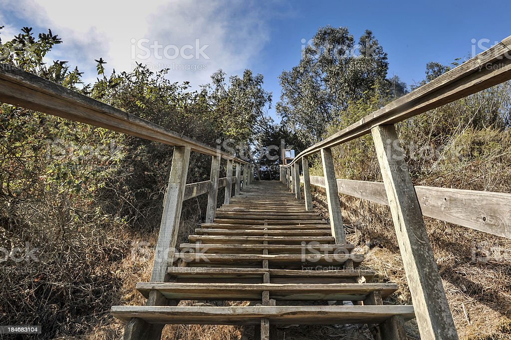 Wooden steps lead up a steep cliff royalty-free stock photo