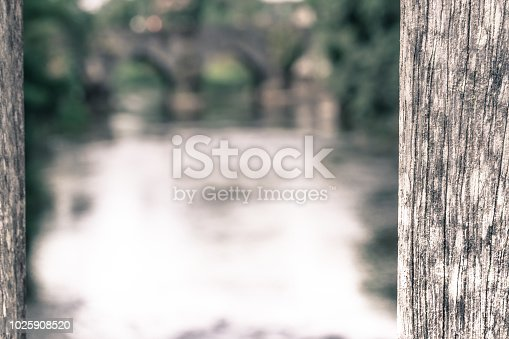 Wooden struts of a bridge in the foreground in focus,  looking upstream towards a arched, stone bridge (defocused).  The river is the Boyne at Trim, County Meath.  One of Ireland's heritage towns, Trim is situated on the River Boyne. It once had the oldest and largest religious settlements in the country. The town is dominated by the medieval Trim Castle.  The Boyne (An Bhóinn or Abhainn na Bóinne in Irish) is a river in the east of Ireland, the course of which is about 112 kilometres (70 miles) long. It rises at Trinity Well, Newberry Hall, near Carbury, County Kildare, and flows northeast through County Meath to reach the Irish Sea between Mornington, County Meath and Baltray, County Louth.   Salmon and trout can be caught in the river.   The river has a rich historical, archaeological and mythical heritage. The Battle of the Boyne, a major battle in Irish history, took place along it near Drogheda in 1690 during the Williamite war in Irelan.