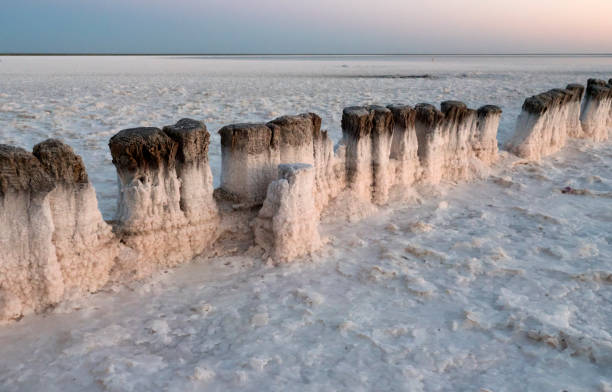 Holzstümpfe. Der Punkt der Salzkristallisation im Salzsee Baskunchak, Russland. – Foto