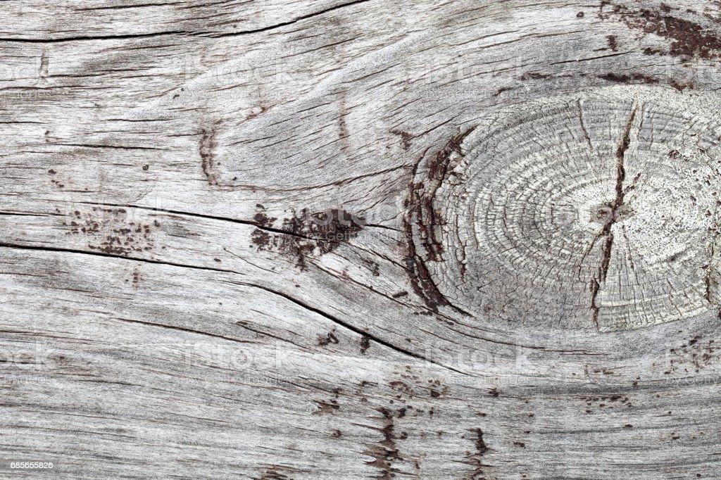 木質的表面 免版稅 stock photo