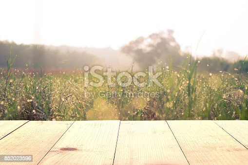 istock wooden table and grass field at morning 852023596