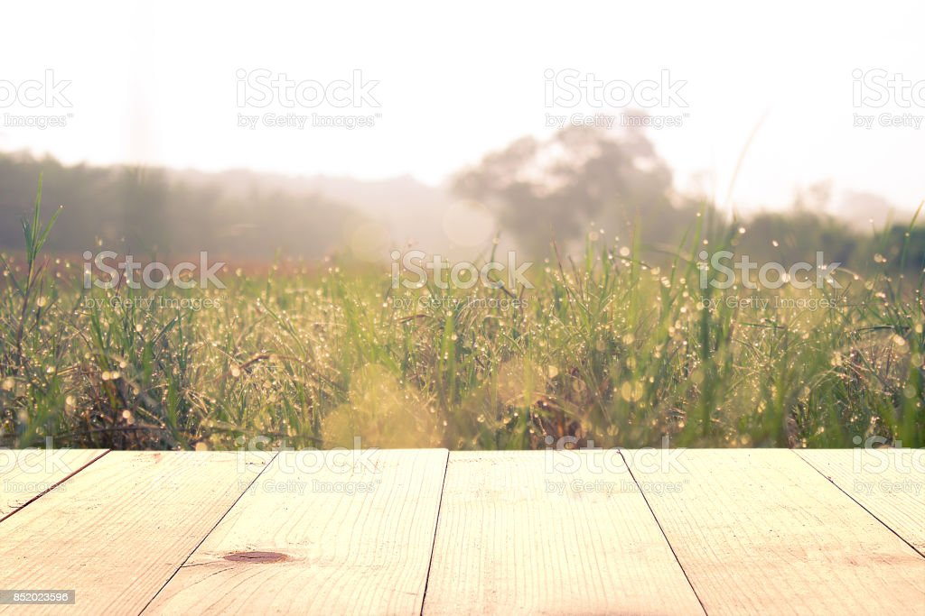 wooden table and grass field at morning stock photo