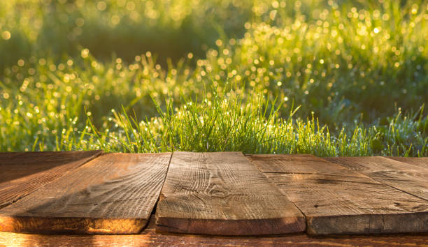 wooden table and spring blurred background