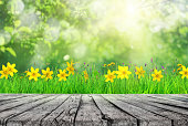 istock wooden table and spring grass and tree leaves background 1128869749