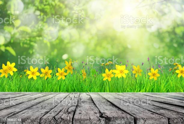 Wooden table and spring grass and tree leaves background picture id1128869749?b=1&k=6&m=1128869749&s=612x612&h=a60fiqvaark5l6ghaxe hukvl2zy4q1 ottgk7xwqs4=