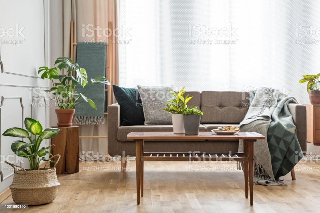 Holztisch Vor Beige Couch In Einfachen Hellen Wohnzimmer Interieur Mit Pflanzen Echtes Foto Stockfoto Und Mehr Bilder Von Beige Istock