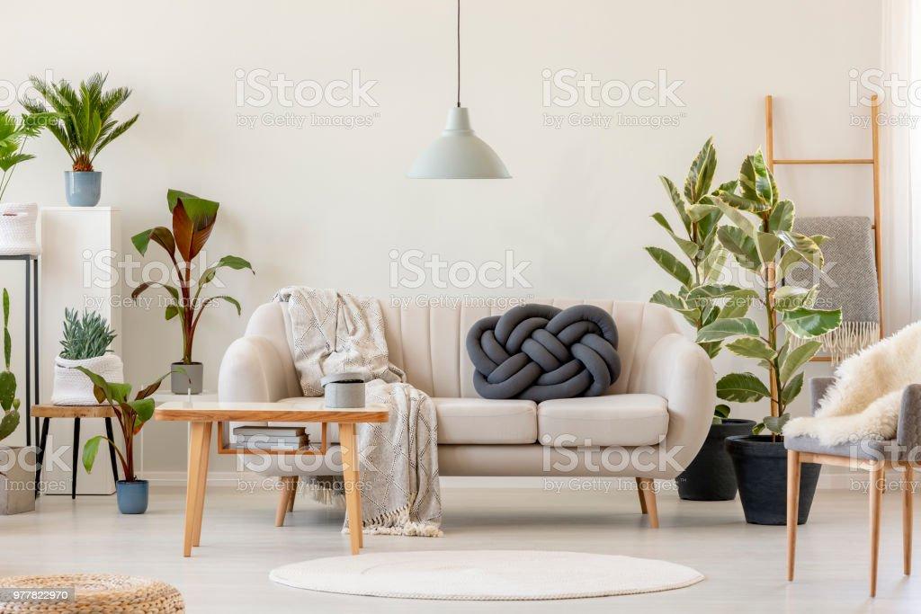Beige Vor Holztisch Floral Interieur Sofa Wohnzimmer Pflanzen Mit In 7gIbvyYf6